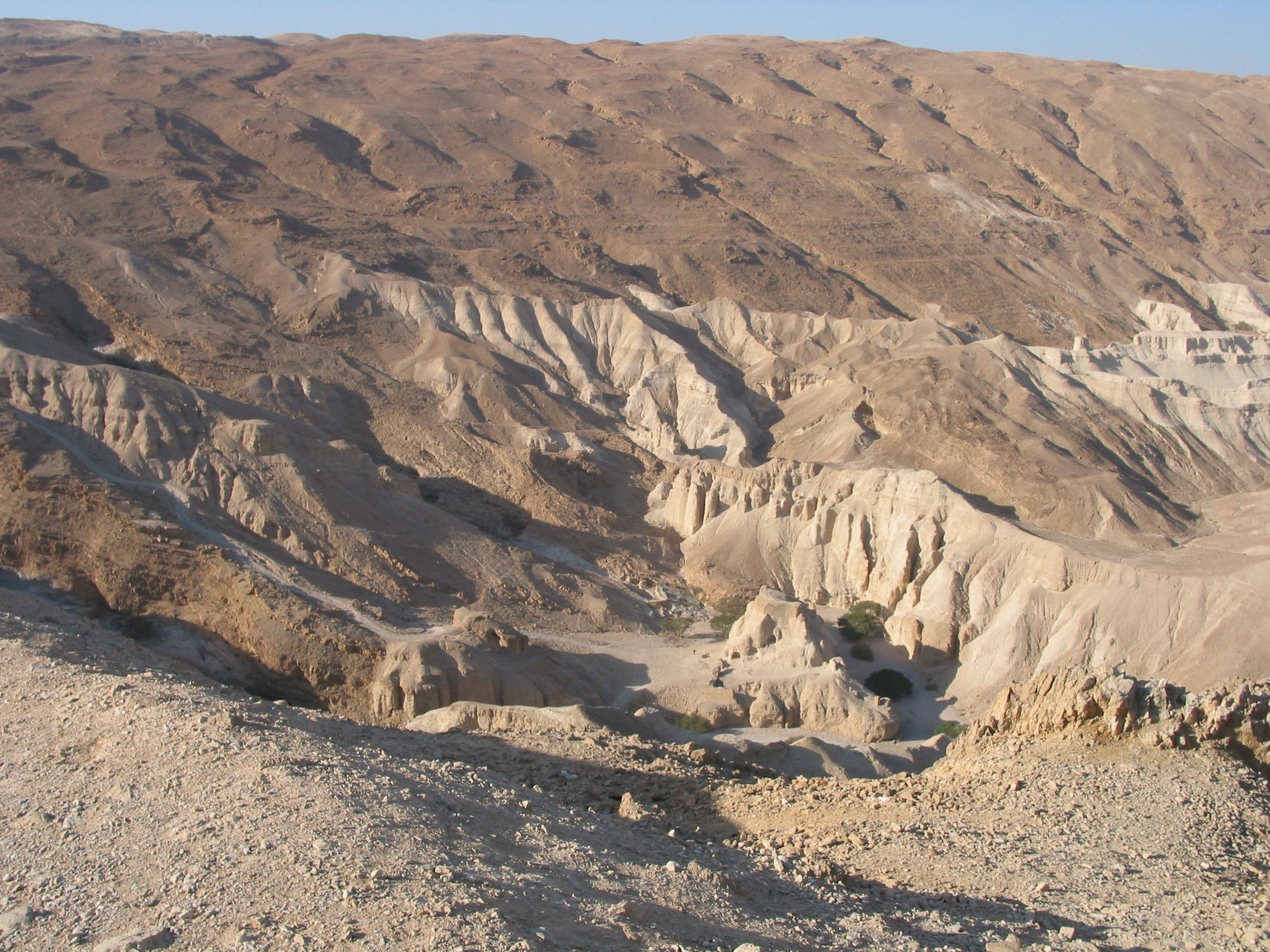 The descent di shai miedzinski vince l 39 orso d 39 argento per for Vento di sabbia silver